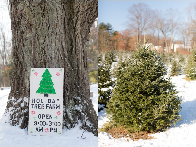 hammond christmas tree hunt deborah zoe photography _0059.JPG