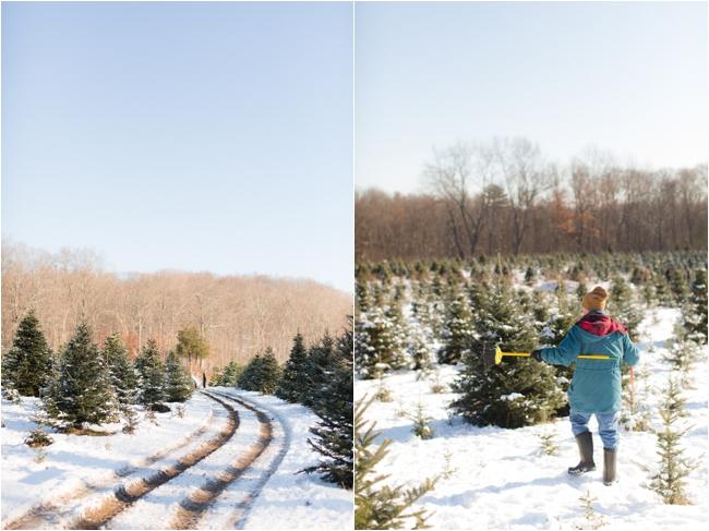 hammond christmas tree hunt deborah zoe photography _0061.JPG