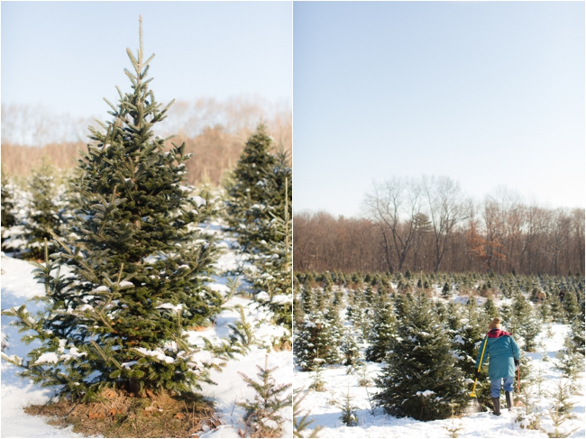 hammond christmas tree hunt deborah zoe photography _0063.JPG
