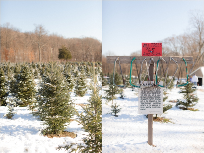 hammond christmas tree hunt deborah zoe photography _0064.JPG