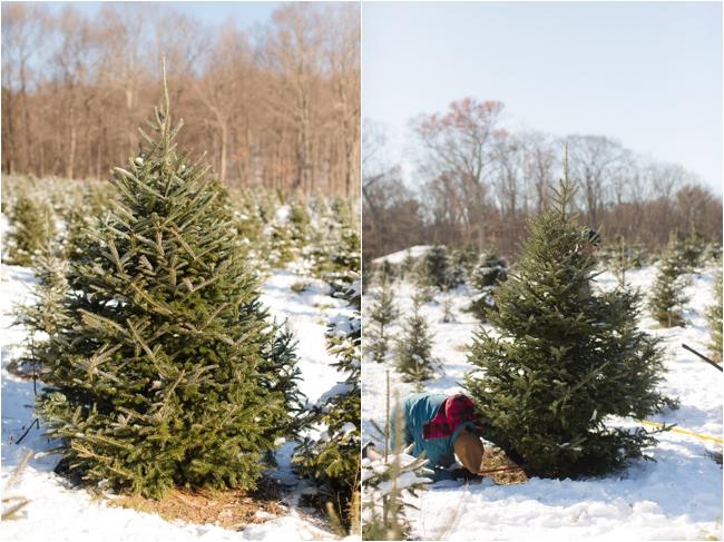 hammond christmas tree hunt deborah zoe photography _0066.JPG