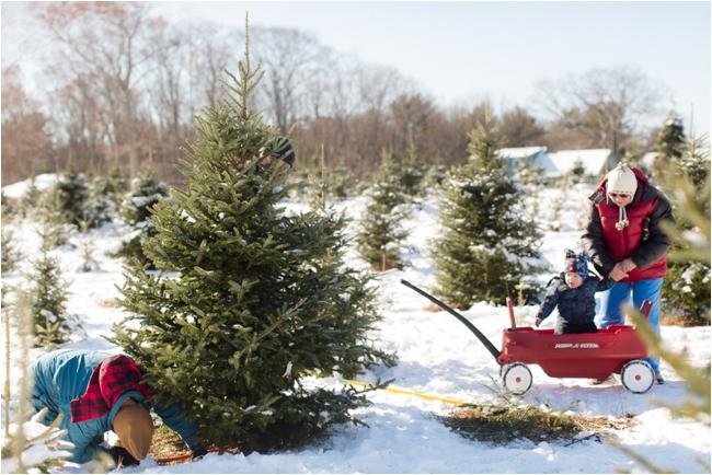 hammond christmas tree hunt deborah zoe photography _0067.JPG