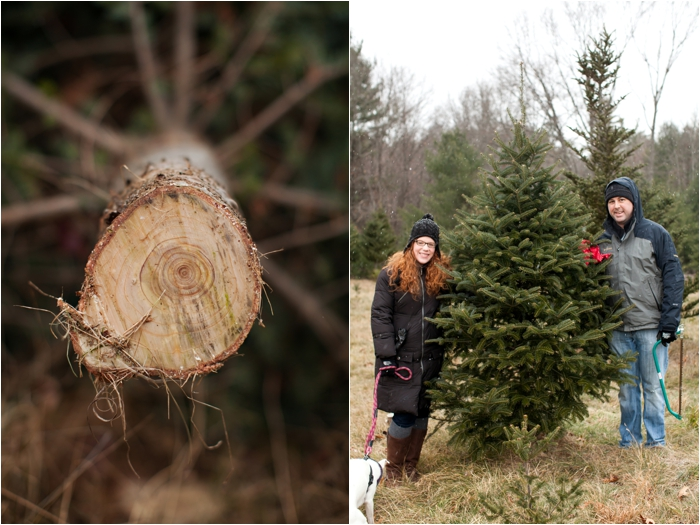 nutter christmas tree farm deborah zoe photography deborah zoe blog boston wedding photographer0011.JPG