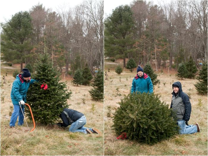 nutter christmas tree farm deborah zoe photography deborah zoe blog boston wedding photographer0012.JPG