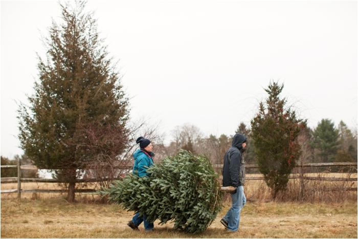 nutter christmas tree farm deborah zoe photography deborah zoe blog boston wedding photographer0014.JPG