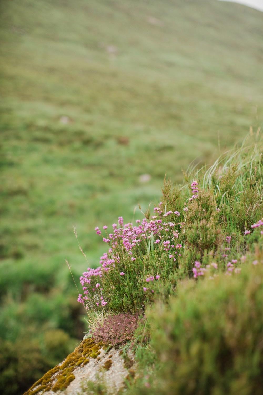 scotland_highlands_deborah_zoe_0044.JPG