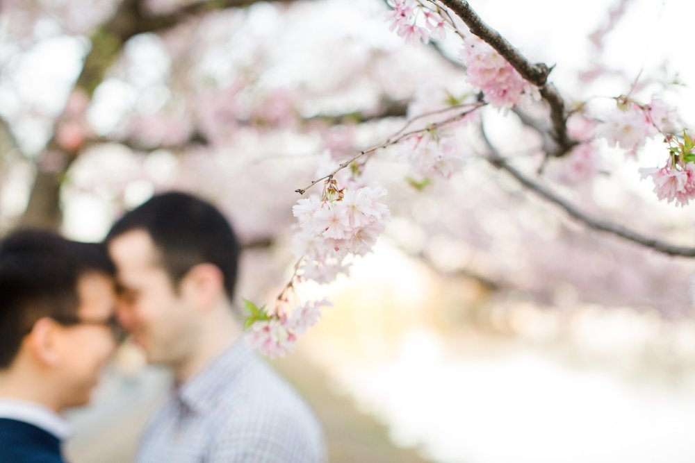 boston_spring_engagement_session_deborah_zoe_photography_00019.JPG