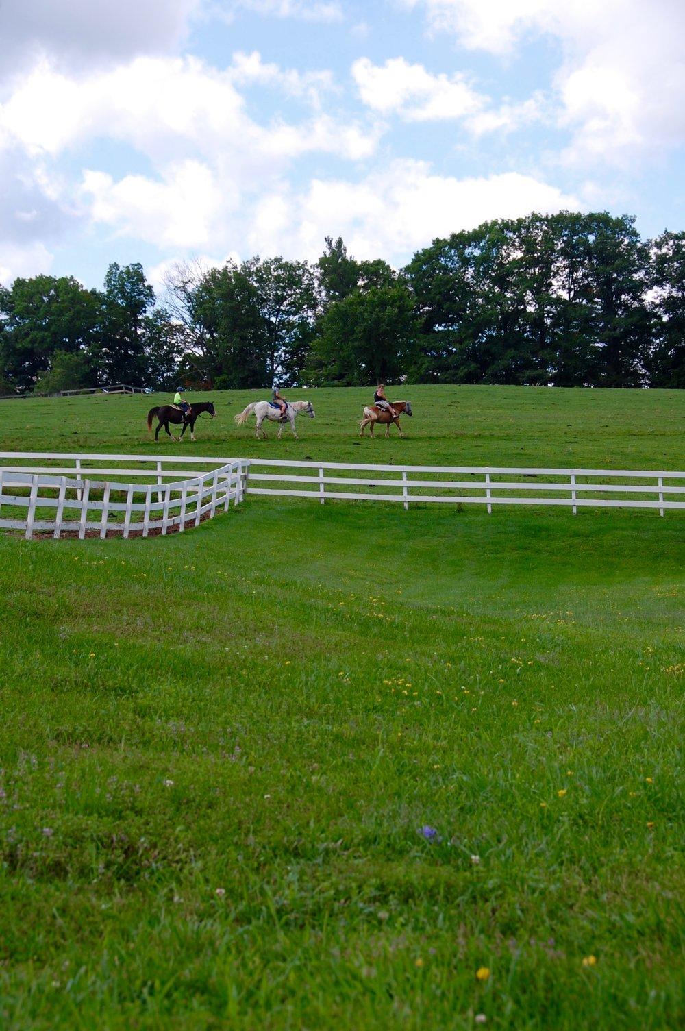 east durham horseback riding  east durham horseback riding