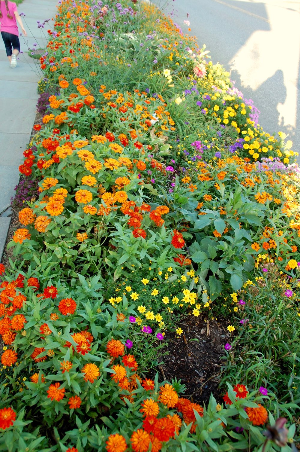 flowers windham ny