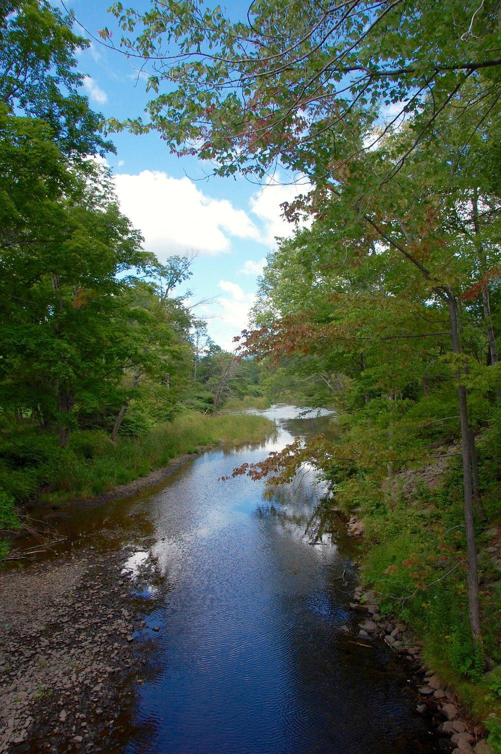 windham path creek