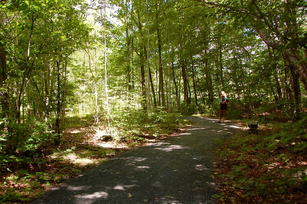 windham path hike