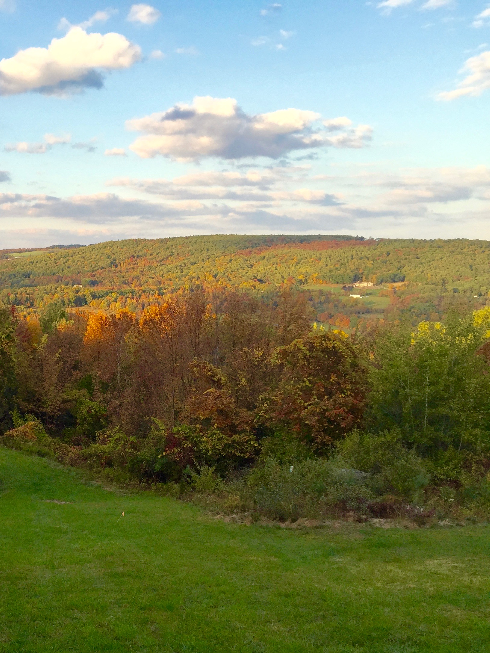 Fall Foliage in the Catskills The Best Place to See the