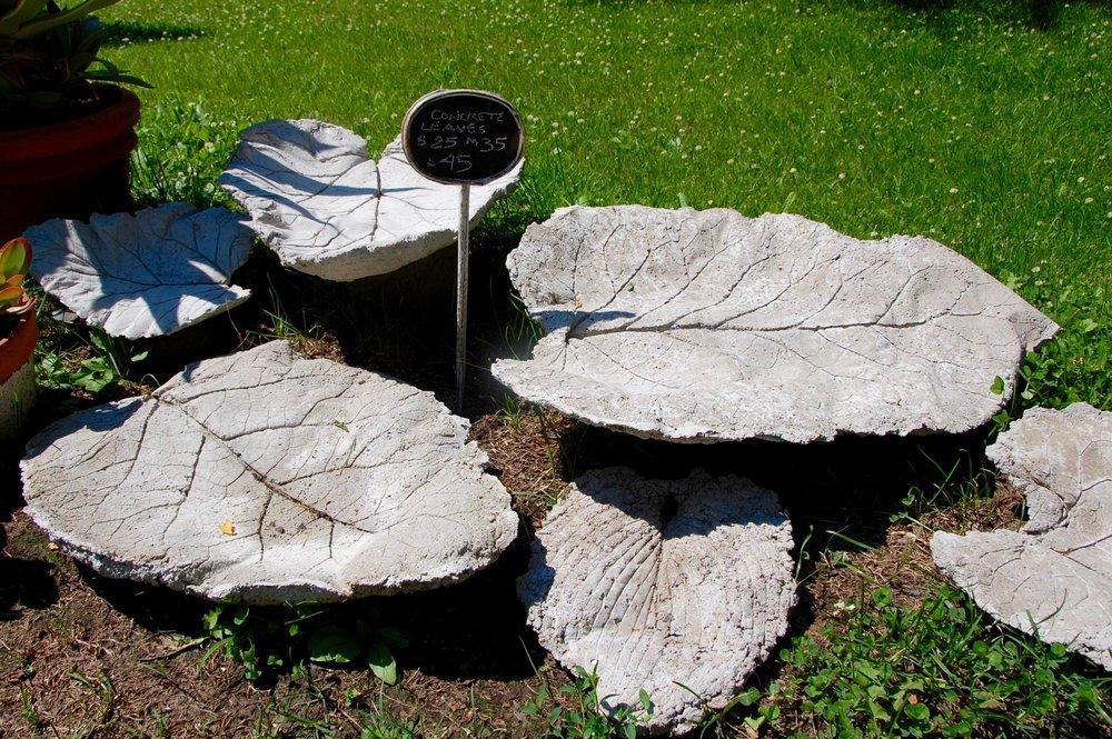 concrete leaves