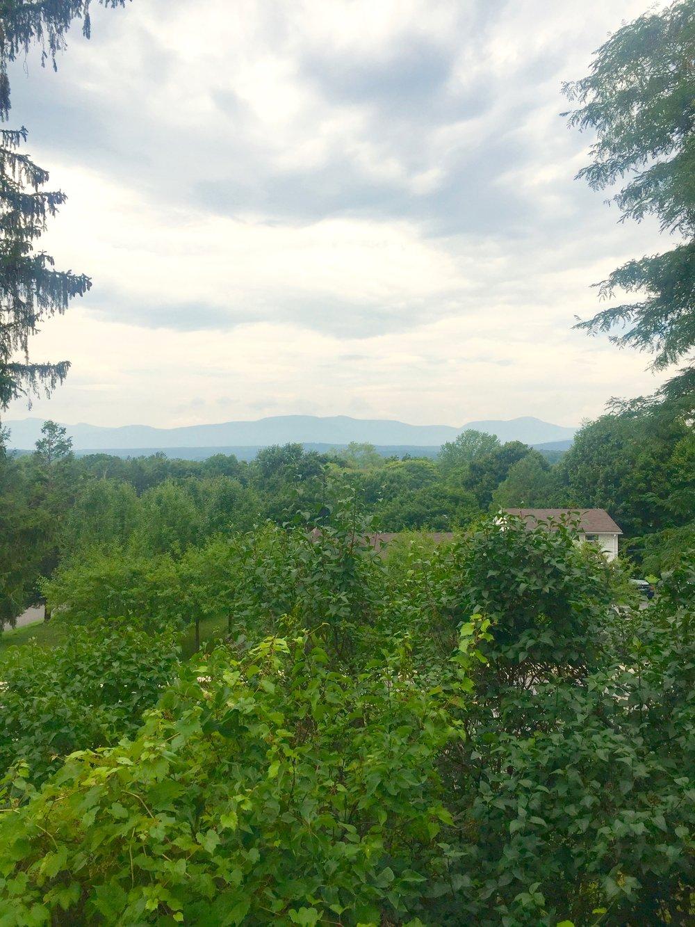 thomas cole house mountain view
