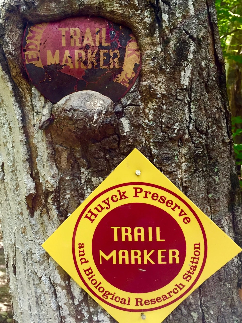 huyck preserve trail marker