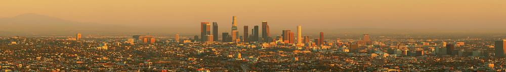 LA shin.jpg