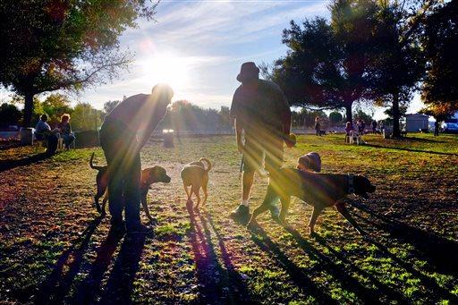 Ruidoso Dog Park