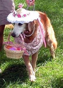 Easter Pet Parade.jpg