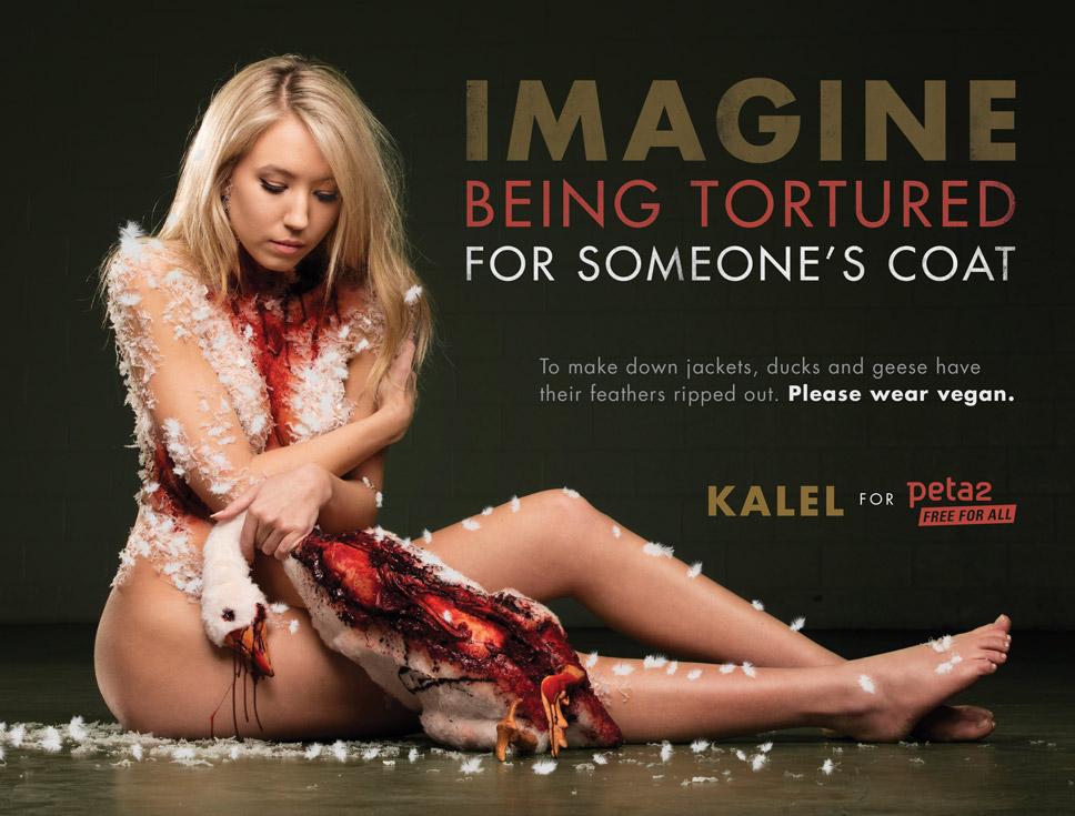 PETA's campaign starring Kalel