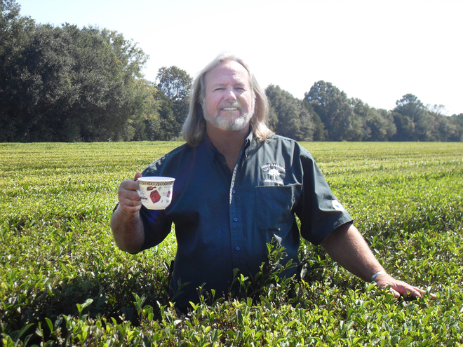 Bill Hall standing in a tea field