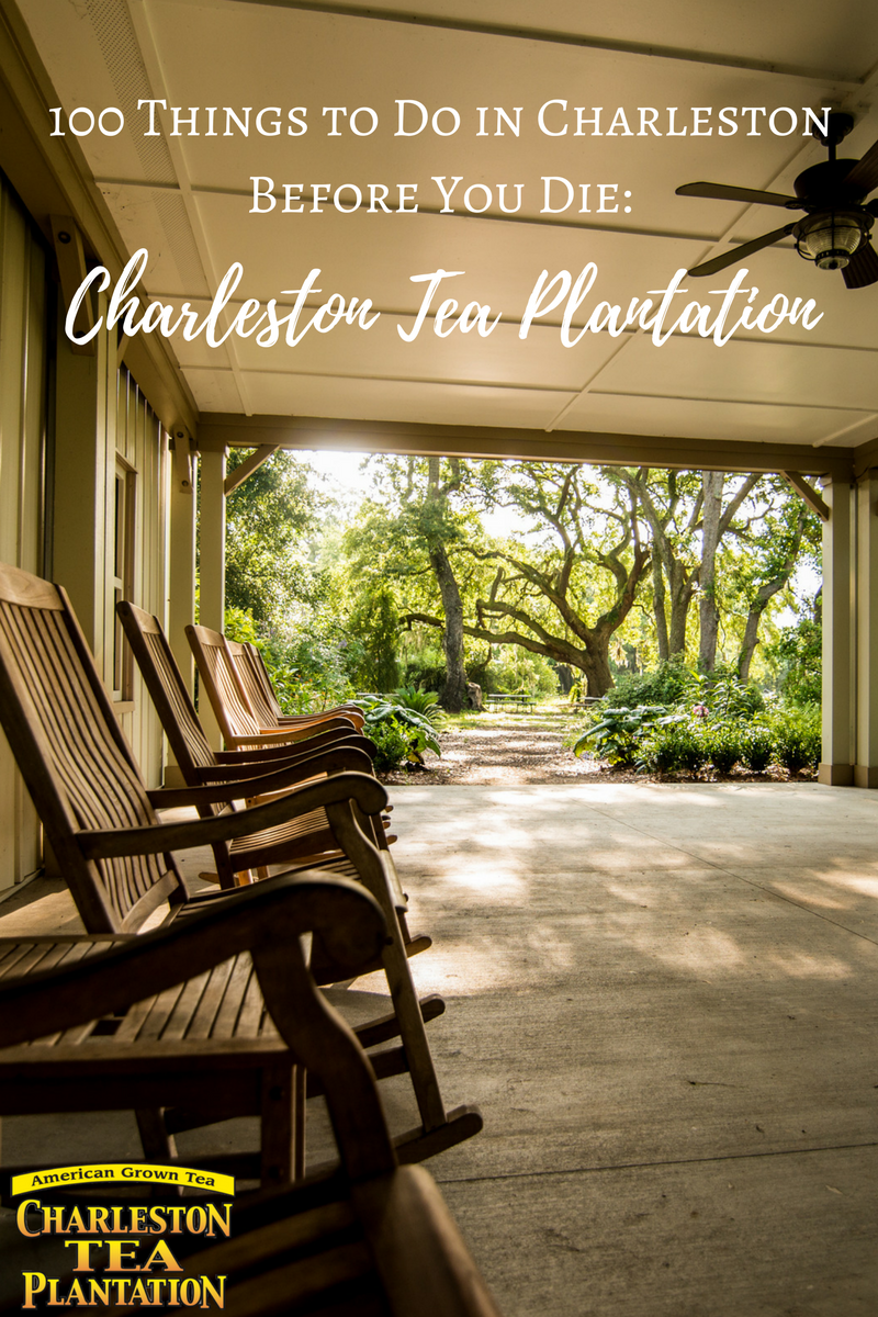 Charleston Tea Plantation Blog Graphic