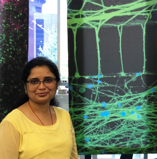 Dr. Amrita Pathak Visiting Scientist