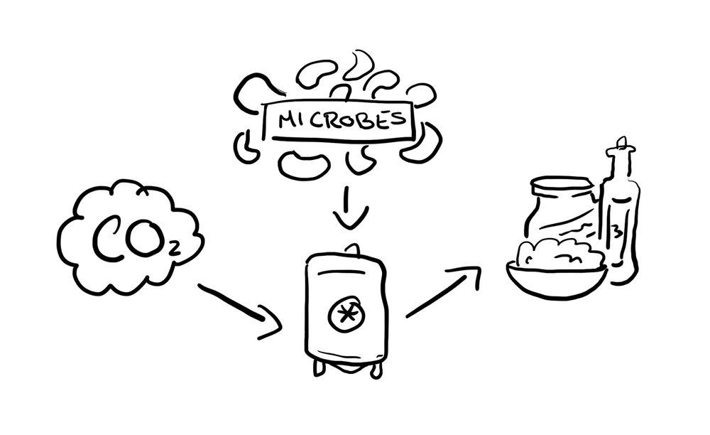 rough diagram process.jpg