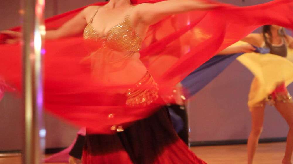 Bellydance veils in motion 2.png
