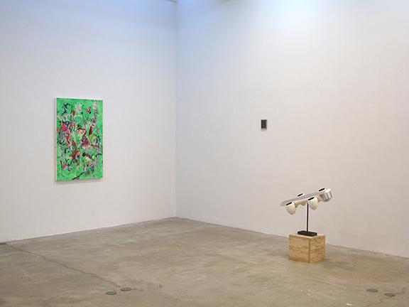 Installation view, PECKHAMNEWYORKPARIS , STL, NY, 2013