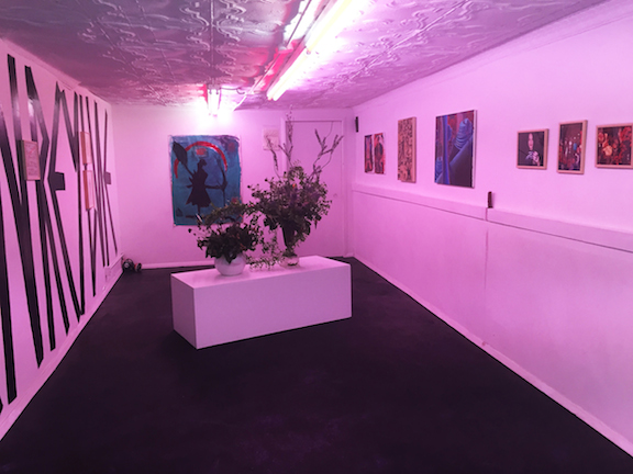 Installation view,  Charmed , STL, NY, 2015