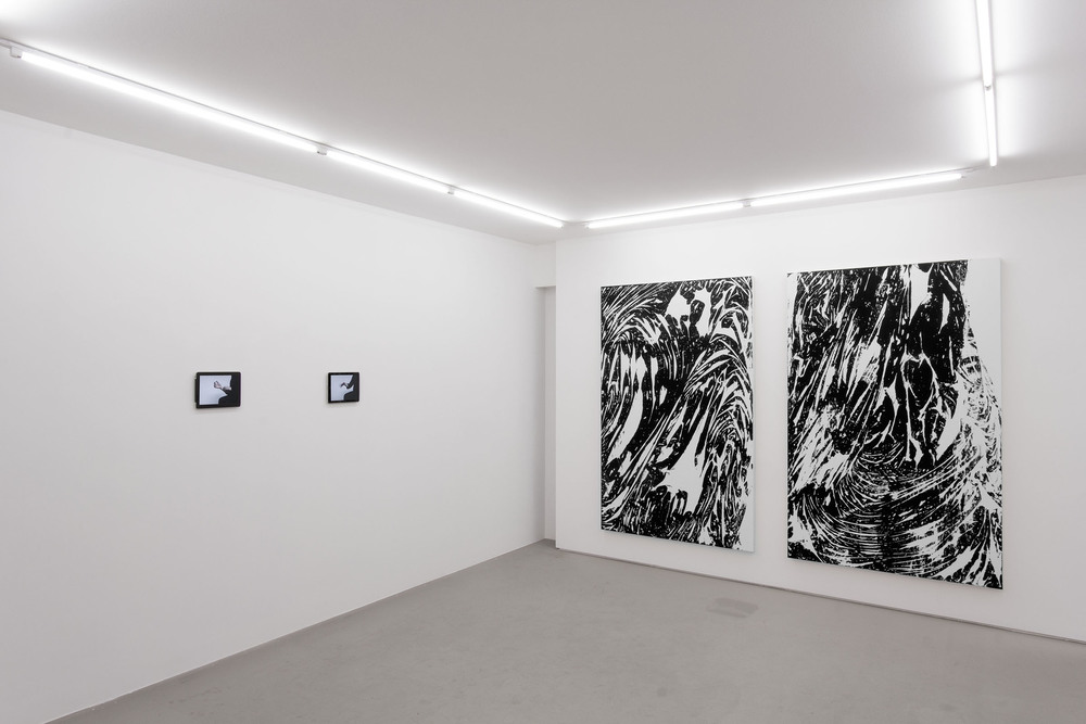 Installation view,  ARSENIO , STL, NY, 2013