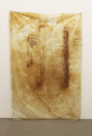 Olga Balema,  Untitled , 2014, PVC plastic, rust, 76.4 x 50.75 in