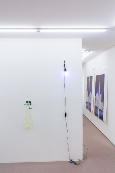 Installation view,  Get The Bloom , STL, Luxembourg, 2014