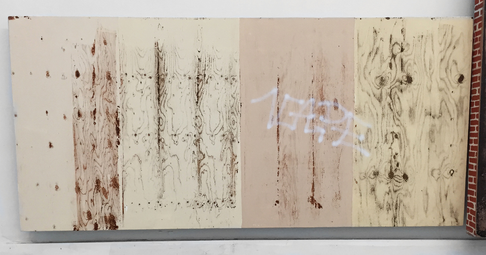 Pentti Monkkonen,  Plywood Wall (Vape)  acrylic on canvas, 20 x 43 in