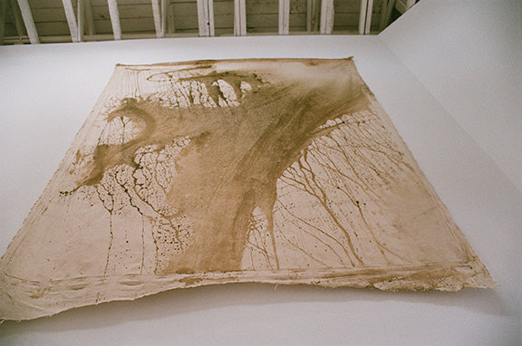 Vivian Suter,  Untitled , n.d., glue and mold on manta, 96.46 x 75.98 in Installation image by Jesse Stecklow