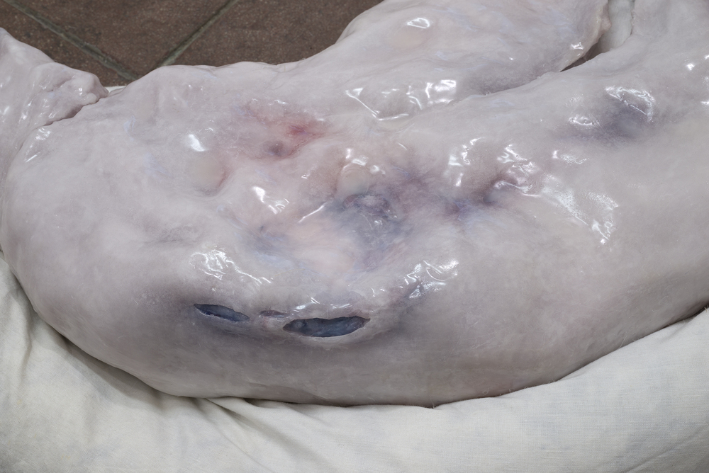 Ivana Basic,  Asleep , 2015, body, feathers, wax, pillows,weight, pressure, silicone, 28 x 19 x 4.5 in