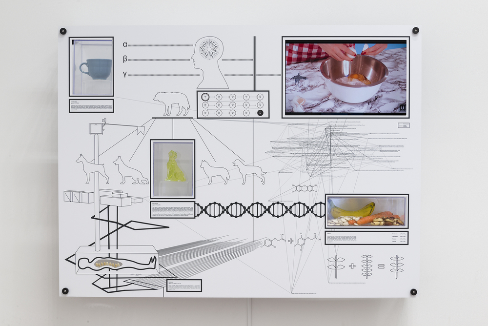 Encyclopedia Inc.,  Display Unit, U-238, 2015, digitally-printed Sintra PVC, Yellowcake (digital video, Edition 1/2) , ceramic mug, glass figurine, dentures, still life (bananas, brazil nuts, carrots, lima beans), 36 x 48 x 6 in