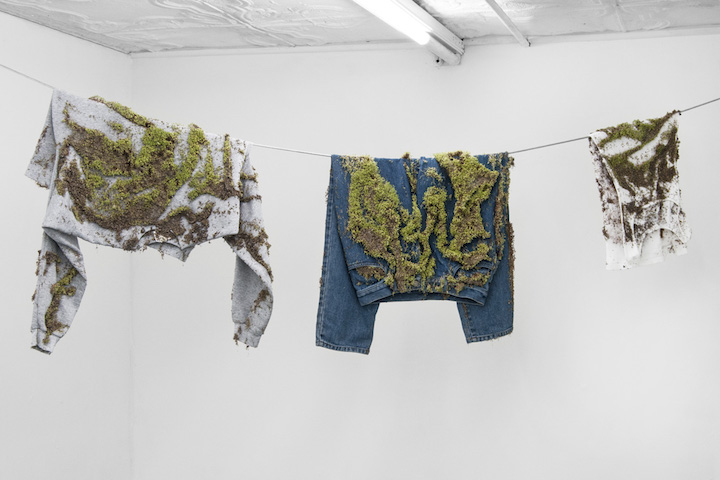 Bea Fremderman,  Untitled (sweatshirt, shirt, jeans) , 2017, Sprouts on clothing, 120 x 24 in