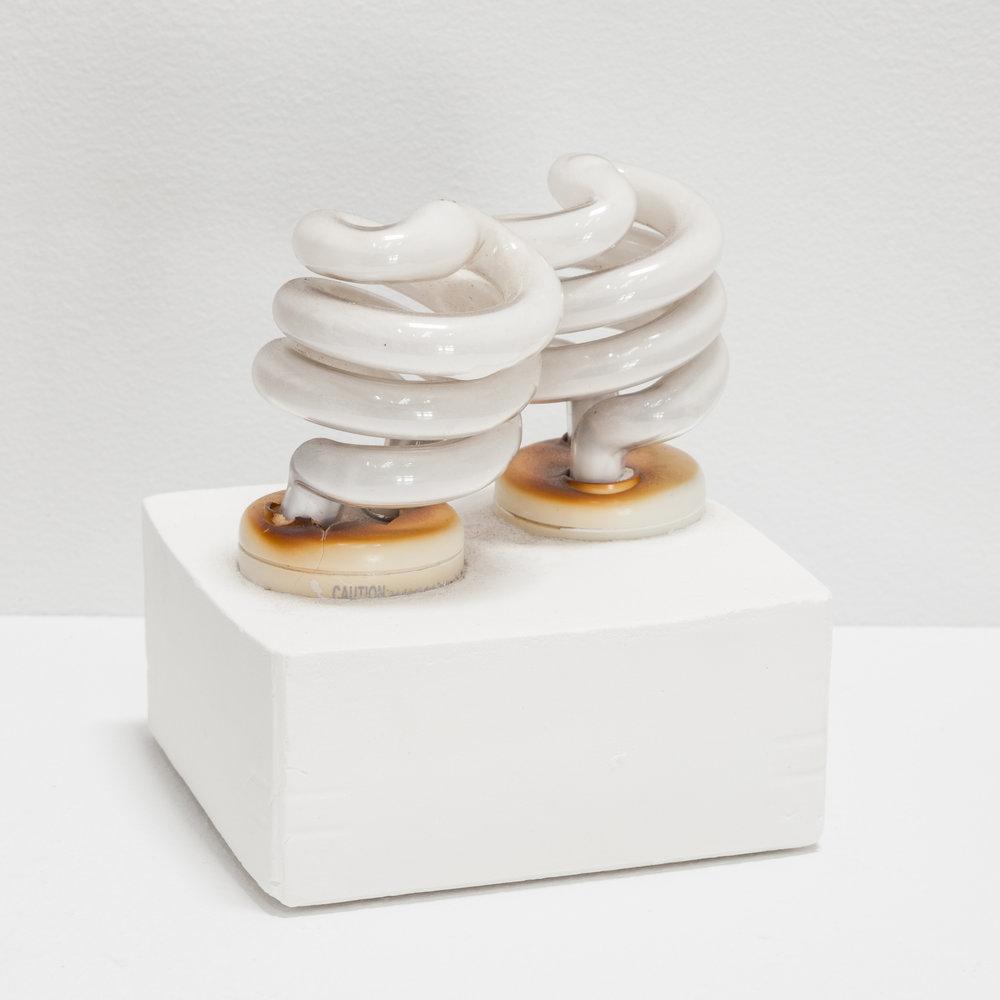 Deborah Hede,  Two Bulbs , 2013, glass bulbs, plaster, 5 × 4 × 4 in