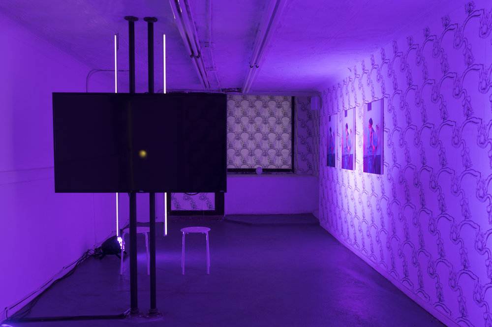 Installation view,  epigenetic , STL, NY, 2018