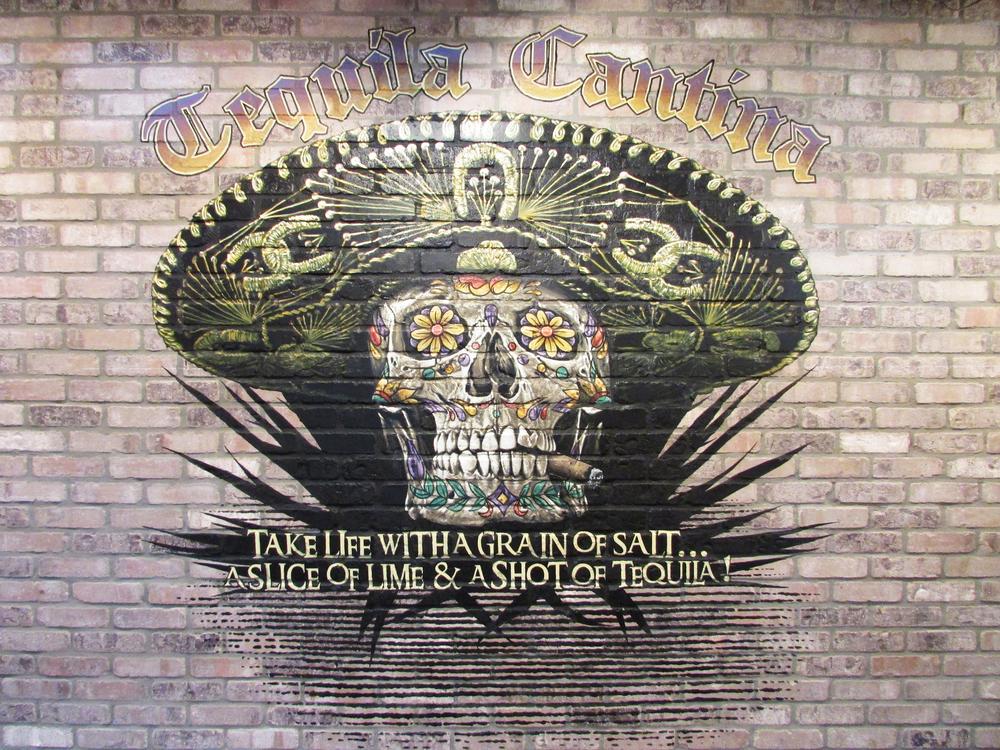 Chevy'sskull.jpg