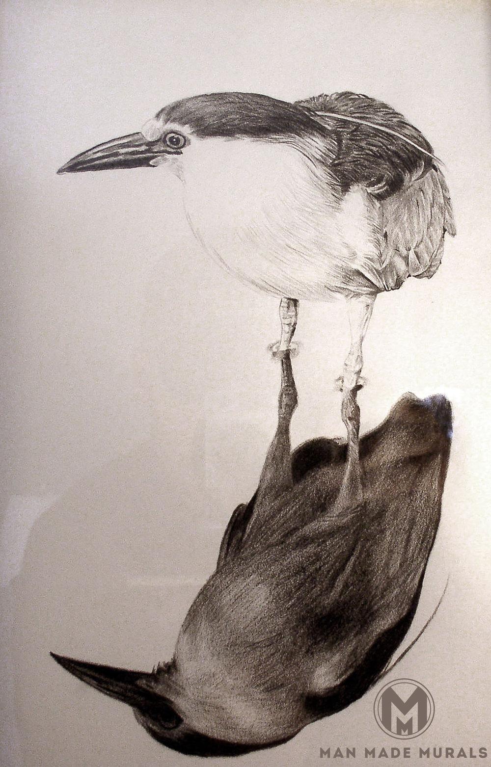 Birddrawingf.jpg