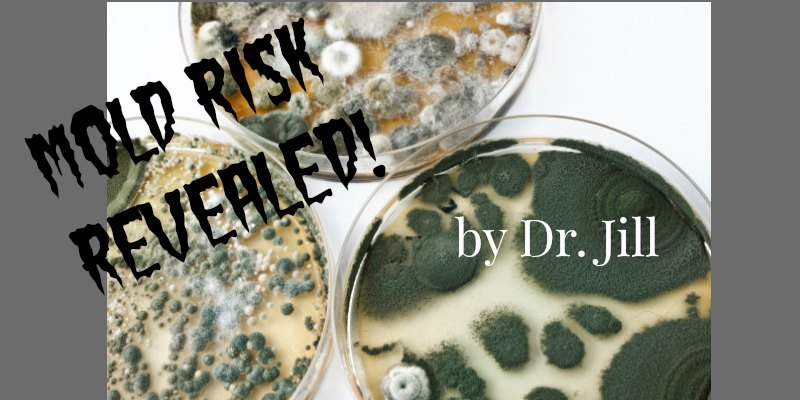 Can Mold Be a Cause of Alzheimer's Disease and Reduced Brain