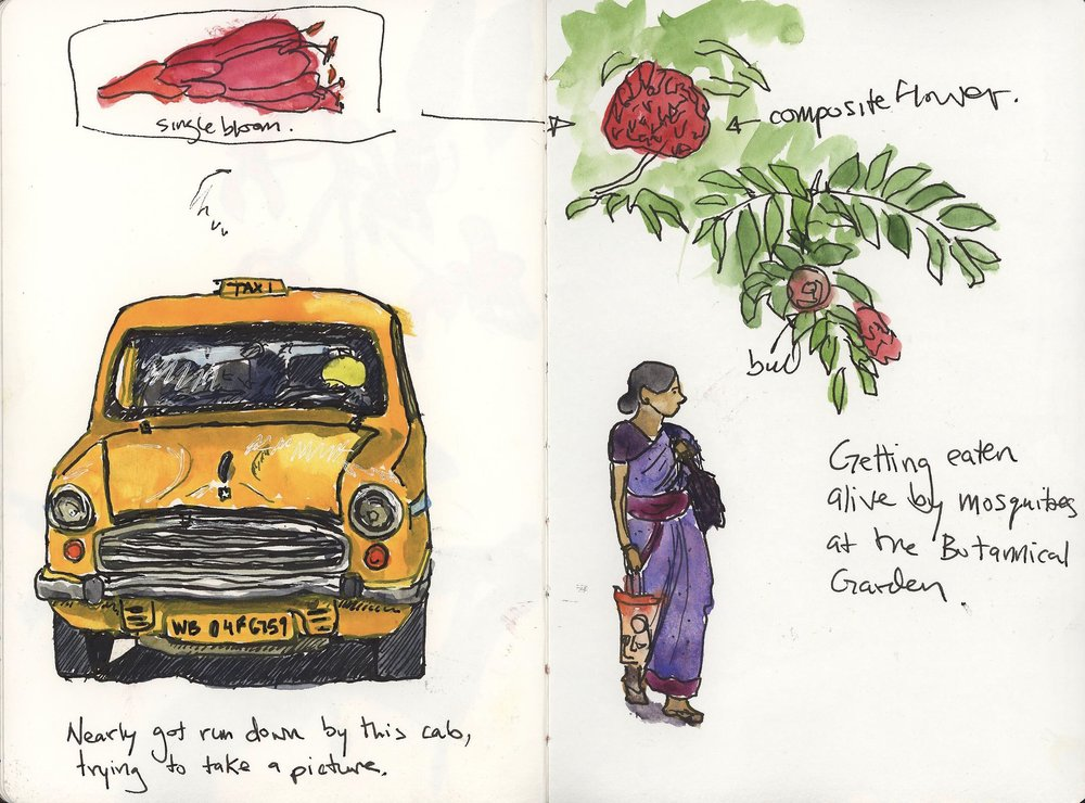 A montage page, bits and pieces of the day. The cab was drawn from a photo because none of them stay still long enough for me to draw. I nearly got run down by it just trying to take a picture!