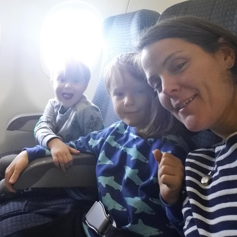 Plane hangs.jpg