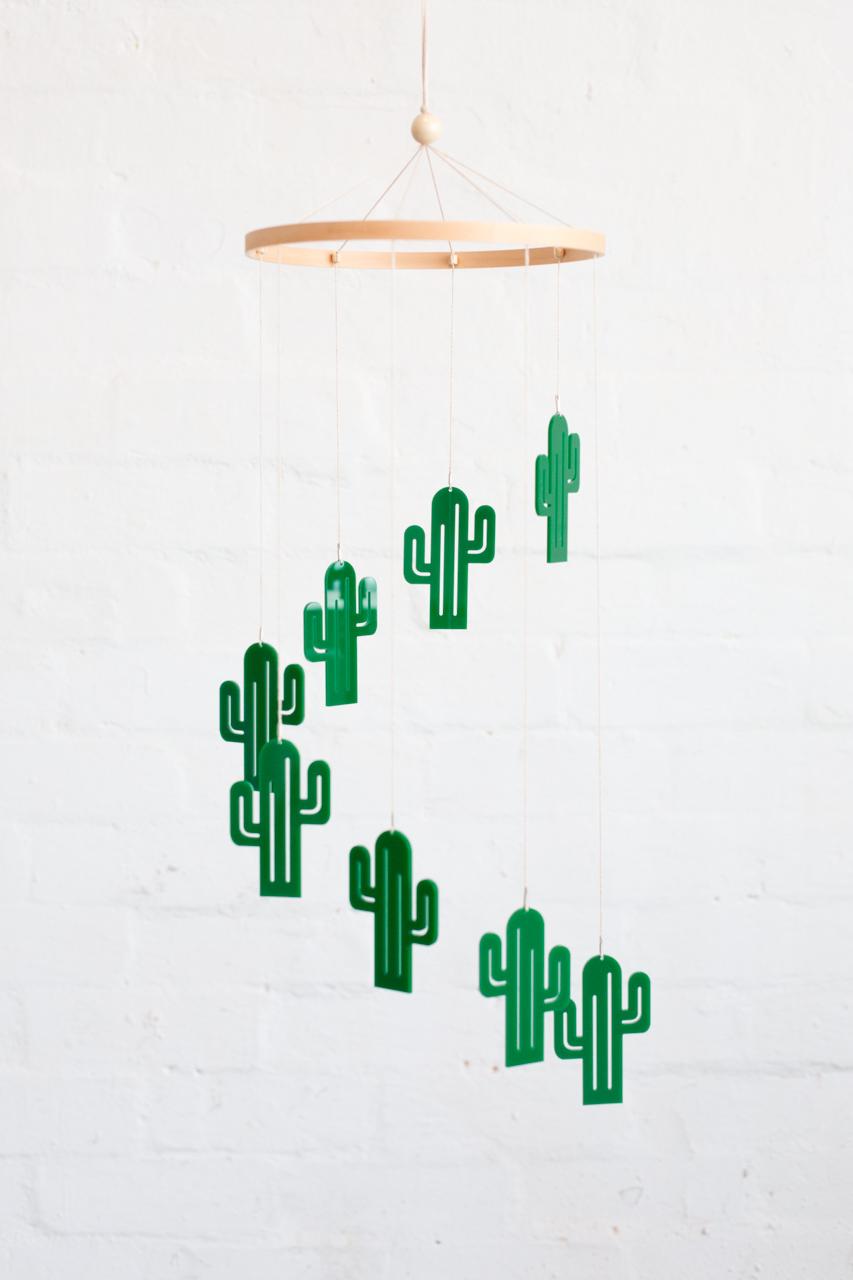 PS-cactus-001.JPG