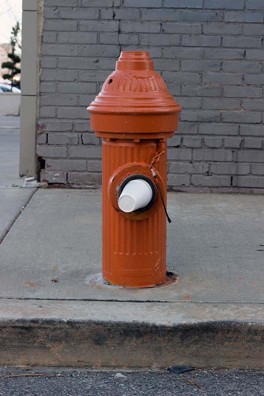 Fire Hydrant and Styrofoam Cup