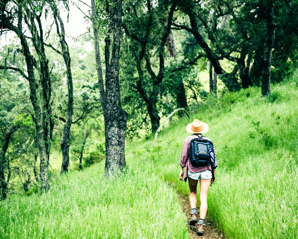Hiking_3.jpg