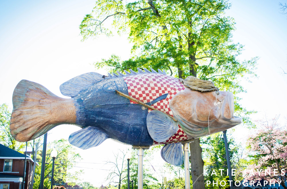 Painted-Fish-4web.jpg