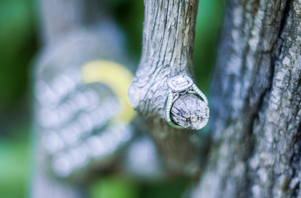 Rustic Pickens SC Engagement -31.jpg
